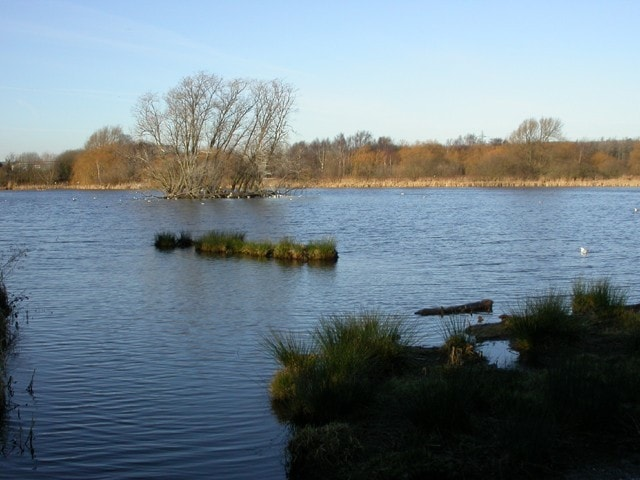 View from the hide at Shibdon Pond.