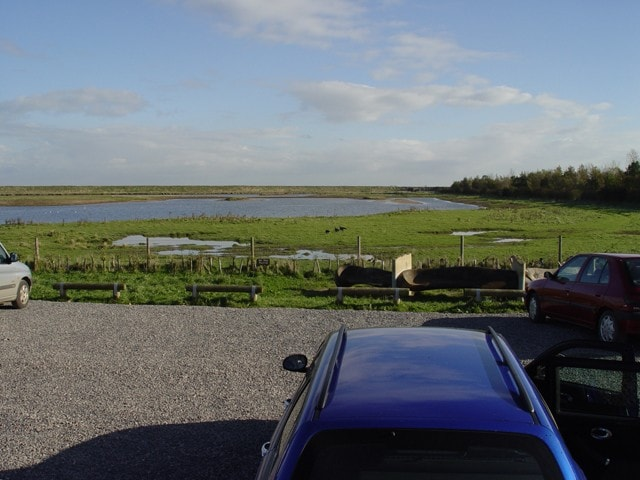 View of the Lagoon from the car park. The hide is in the row of trees/shrubs on the right. Sony DSC F-717.