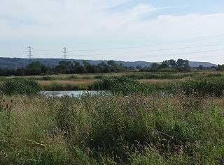 View towards Gordano Valley from Portbury Wharf Nature Reserve