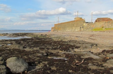 The Harbour Wall: the white dots halfway up the wall beyond the bend are Kittiwakes.