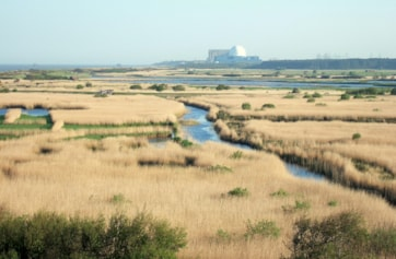 View looking south over reserve from Dunwich Heath.