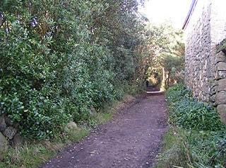 Barnaby Lane