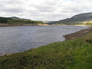 Looking northeast from the dam.