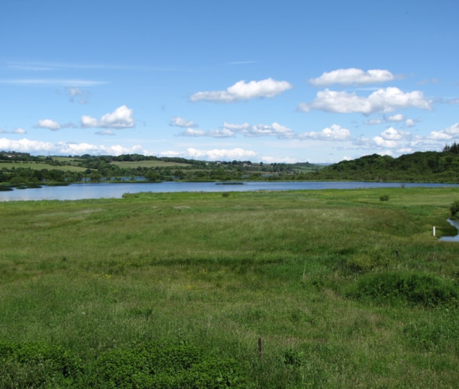 Aird Meadow, from visitor centre tower.