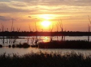 Noah's Lake - the view from Noah's hide