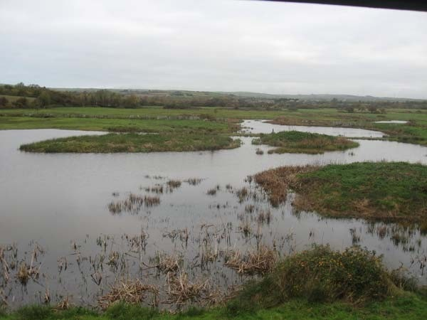View from Tower Hide early morning.