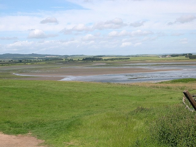 A haven for wildfowl and waders.