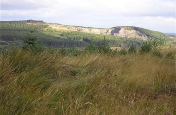 This is Daviot Quarry - a familiar landmark near Inverness when driving north up the frustratingly designed A9.