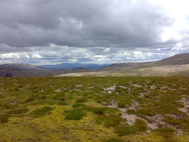 The plateau.