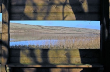 The view through the RSPB viewing screen at the west end of Tindale Tarn.