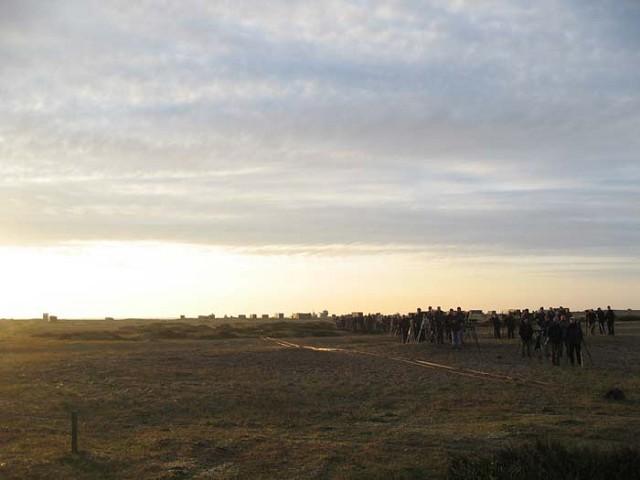 Sunrise on Crested Lark day.