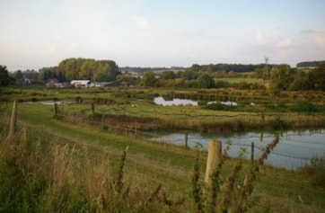 Piccotts End Pools (L. Cura & Sons fish farm) - keep to rights of way - best viewed from public footpath along SW side of site - access footpath at Three Valleys Water works to SE, or Noake Mill Lane (private road) to NW, both off of Leighton Buzzard