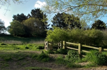 Images of the area called 'Wilderness' on the StourLNR Bournemouth.