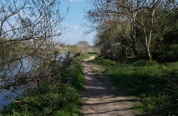 The path down river at the end of the Orchard on the Stour LNR, Bournemouth.