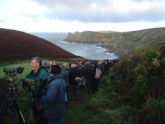 A picture of the seaward end of the valley and the crowd at the Alder Flycatcher twitch.