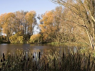 One of the smaller lakes at Wicksteed Park
