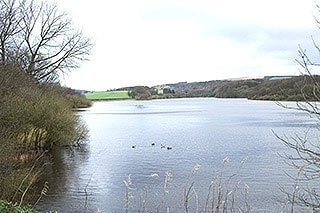 "Reservoir at <a href=""/birdnews/gridref.asp?gr=SD621148&a=y"" target=""_blank"">SD621148</a>. Taken using my Canon 350D with the standard 18-55mm kit lens"