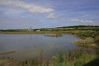 Ryan's Field RSPB Reserve Hayle