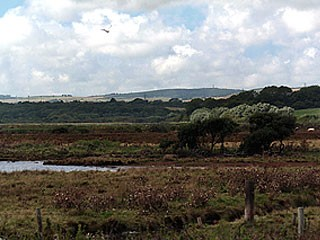 Taken on a beautiful hot, sunny day at Lodmoor
