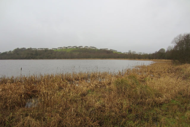 Racecourse Lough on a miserable winter's day.