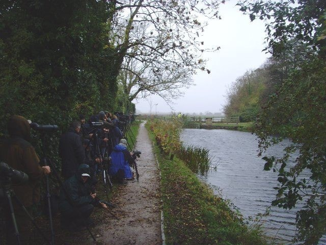 The Green Heron crowd at the Royal Military Canal, West Hythe.