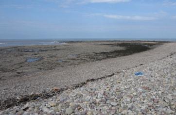 Sker Point at low tide.