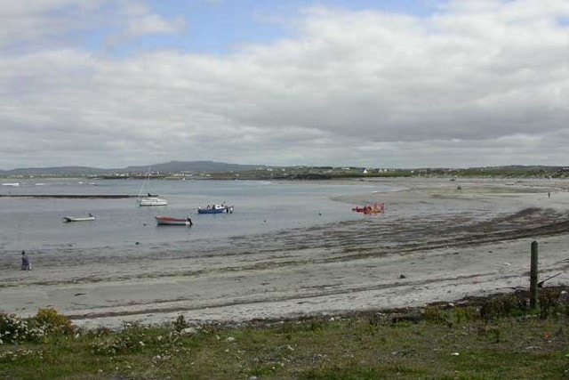 Seafield, Quilty - a good spot for calidrids.