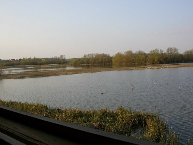 View from Near Hide.