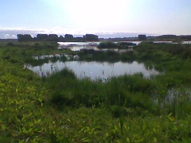 Egleton Reserve.