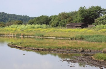 The Allen Hide viewed across the Allen Pool from the Eric Morecambe Hide.