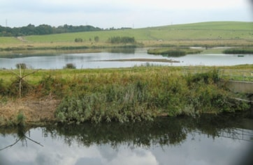 Astley Lake, Swillington Ings.